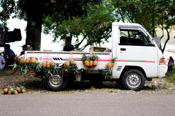 パイナップルとピックアップトラック